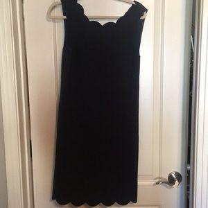 J CREW Navy Sheath Dress. Scallop neck and hemline